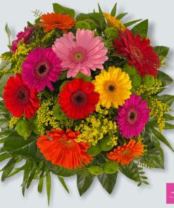 lechner-floristik_Gerbera-Liebe_
